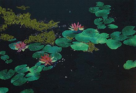 Waterlilies fabric collage by Sandy Kane